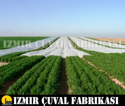 Don Kırağı Örtüsü -Agril 1,60 x 500 mt 30 gr/m2