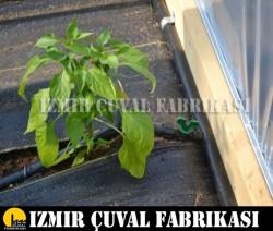 İZMİR ÇUVAL FABRİKASI - 2.10 mt x 100 mt Taban Örtüsü